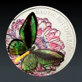 Exotic Butterflies 3D - Ornithoptera Priamus 2012